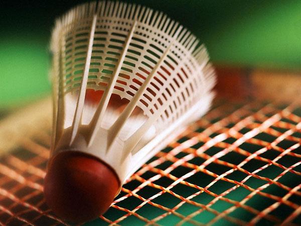Badmintoninter.jpg