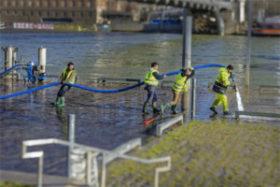 © Après la crue de la Seine – Marcus BARBOZA
